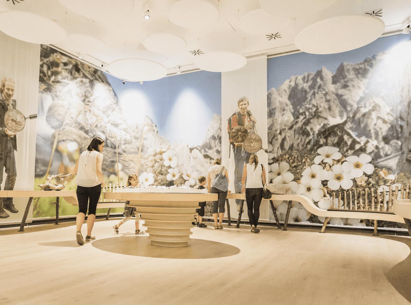 Naturhistorisches Museum 01