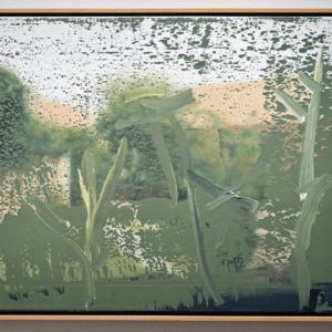 Richter Gras 1467x1080 1