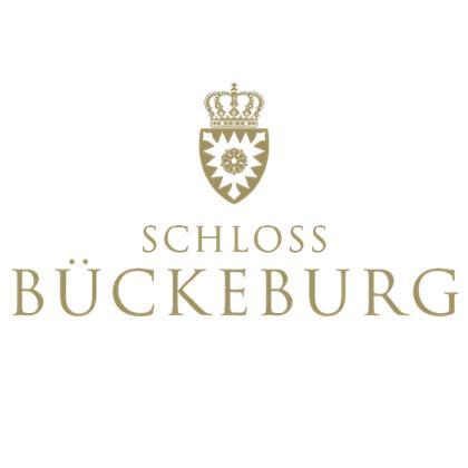 castle bueckeburg square